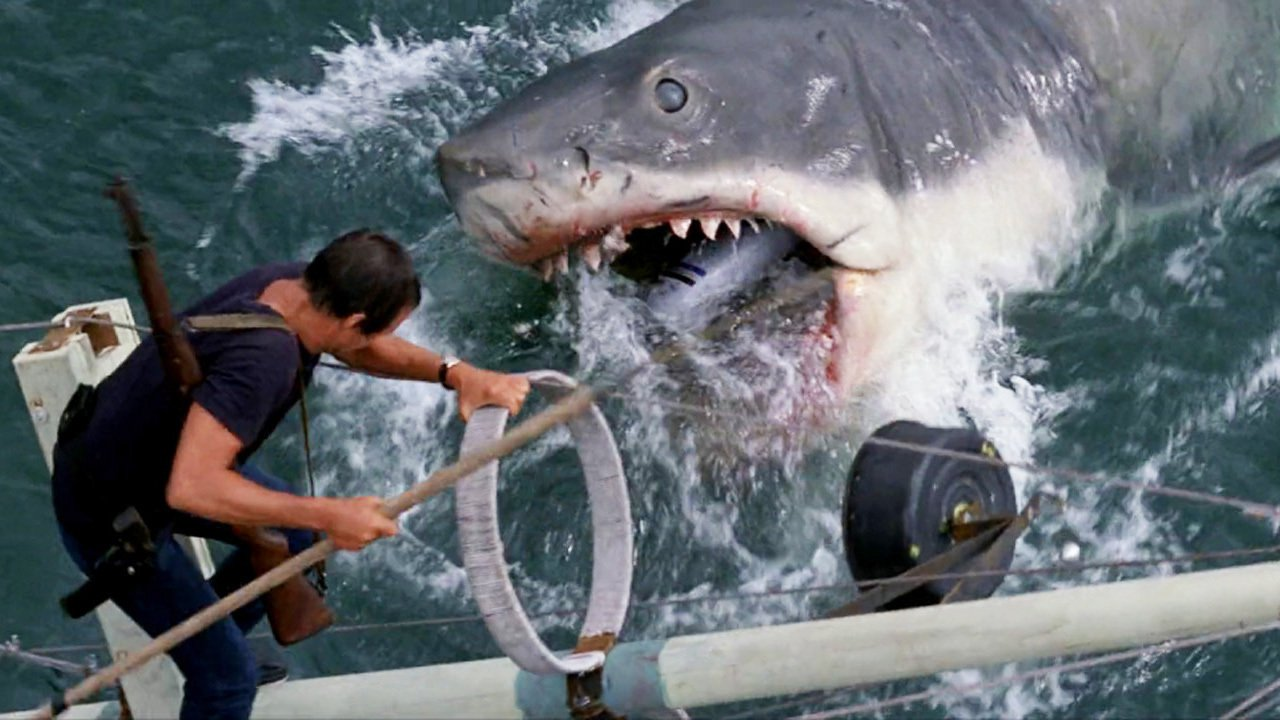 analysis of the film jaws Movie analysis of jaws essay by twistintommy, college, undergraduate, a+, january 2006 jaws the movie, is not like any other any other fish story the film is about a gigantic 26 foot shark that has an appetite for people how horrifying is that.