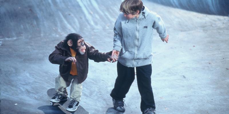 Король скейтборда (2001)