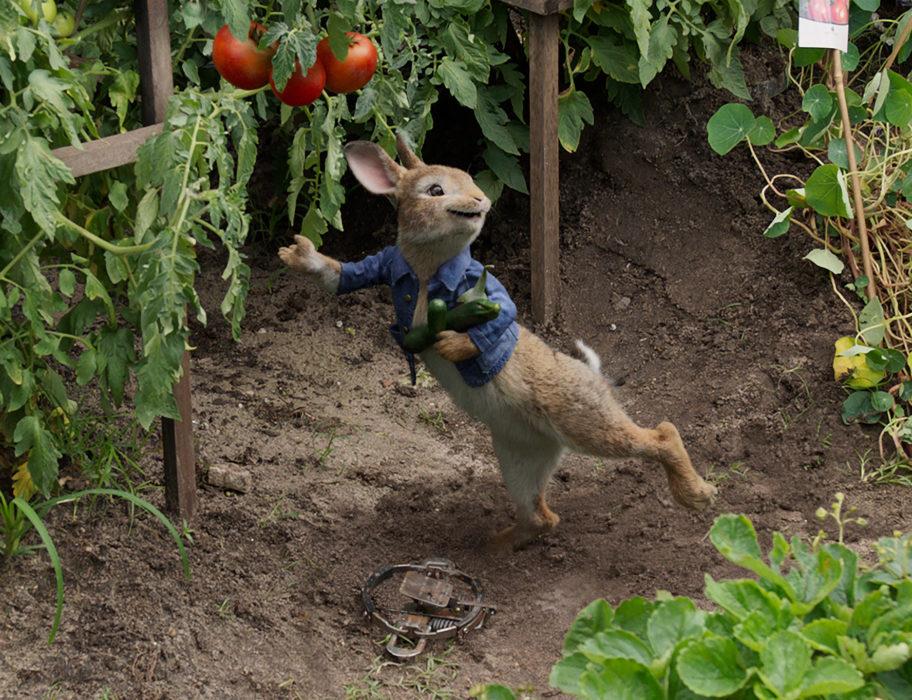 Рецензия «Кролик Питер» (Peter Rabbit, 2018)