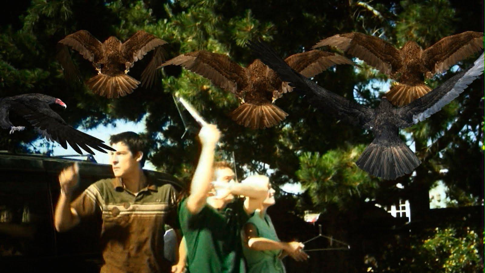 Текст о фильме Джеймса Нгуйена «Птицекалипсис: Шок и Трепет» (Birdemic: Shock and Terror, 2010)