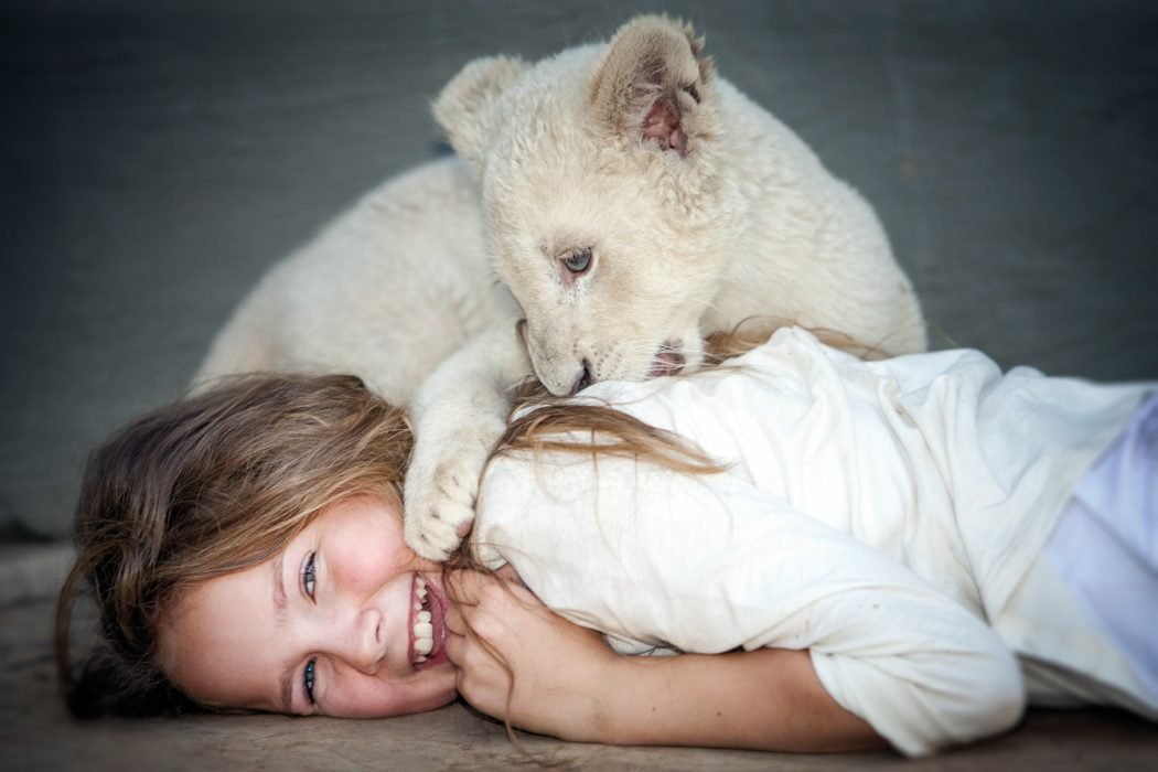 Кадр из фильма «Миа и белый лев»