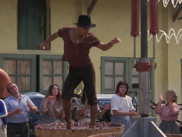 Кадр из фильма «Укрощение строптивого»