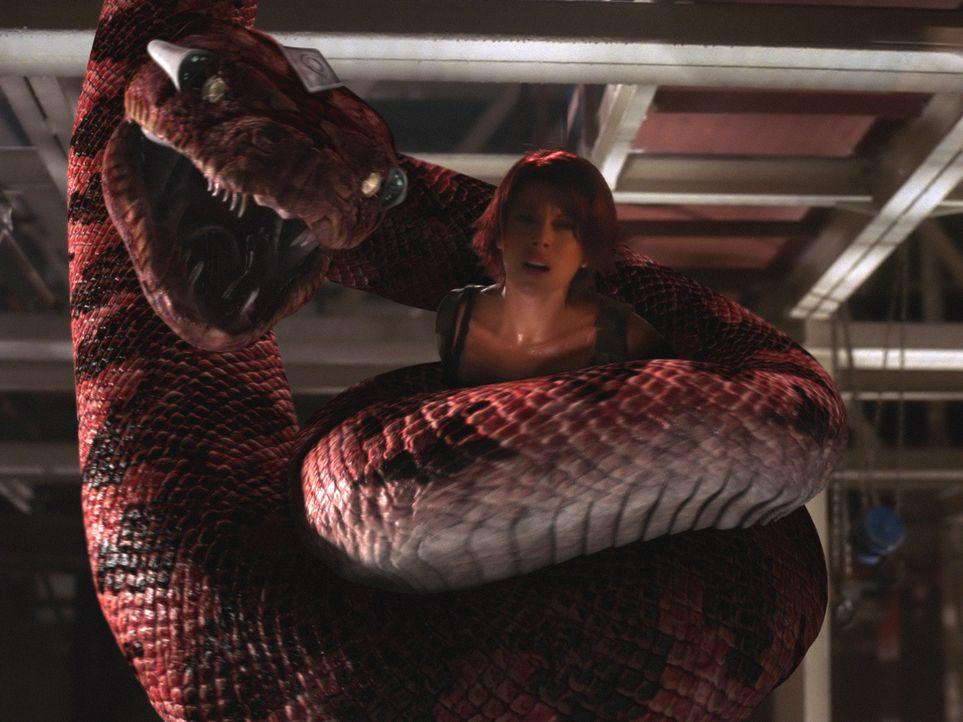 Три невероятных фильма о змеях
