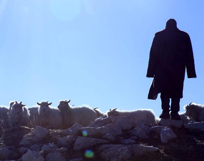Кадр из фильма «Исчезающая деревня»