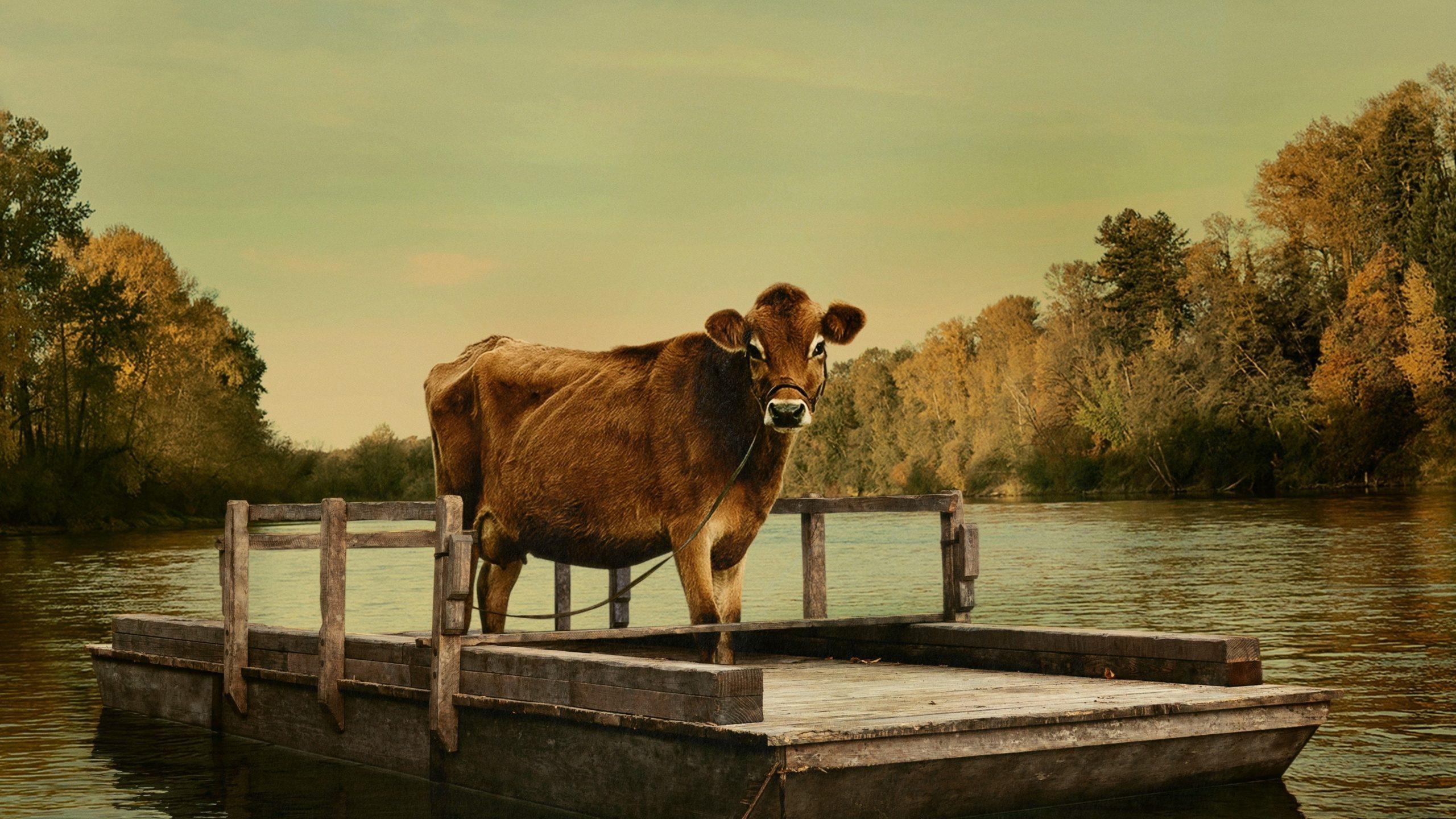 Кадр из фильма «Первая корова»