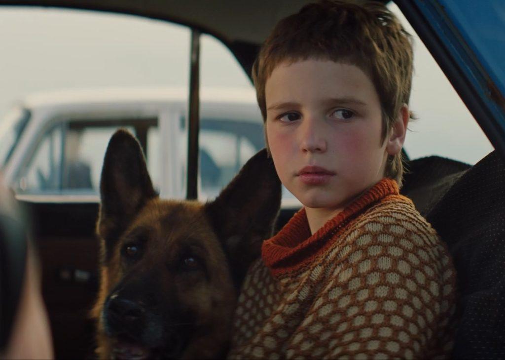 Александр Домогаров мл. выпускает фильм о мальчике и собаке