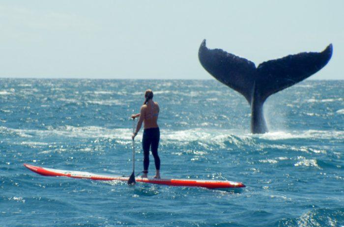 Кадр из фильма «Она - океан»