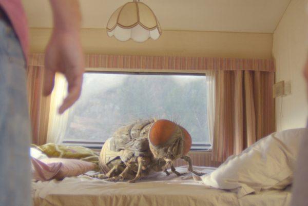 Кадр из фильма «Жвалы»
